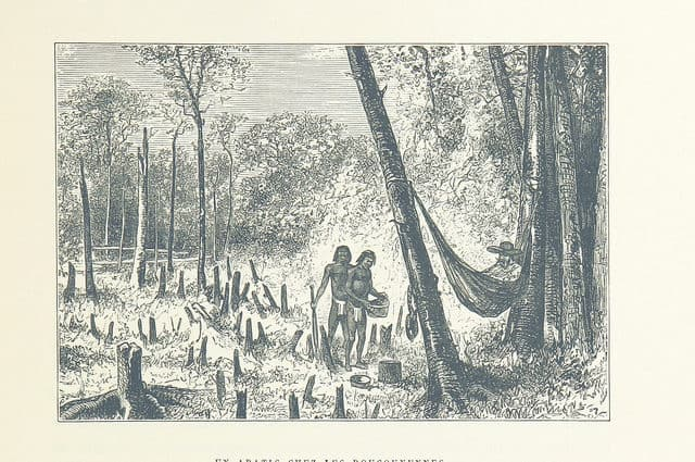 Gravure ancienne présentant un homme dans un hamac