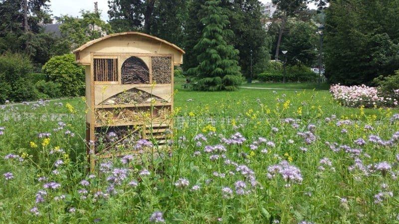 Ruche à abeilles solitaires et autres insectes